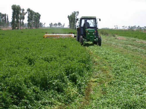 Alfalfa Harvesting by Hancock Seed Company