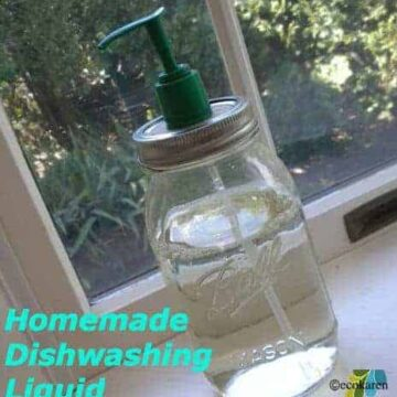 homemade dishwashing liquid ecokaren