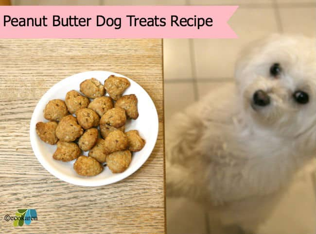 home made peanut butter dog treats by ecokaren