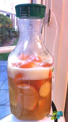 fermenting-citrus-enzyme-ecokaren