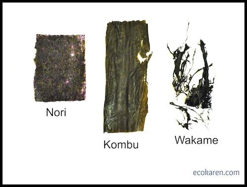 Dried Nori, Kombu, and Wakame