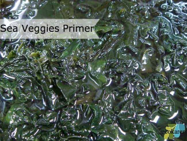 Sea Veggies Primer: Kombu, Dulse, Wakame, and Nori