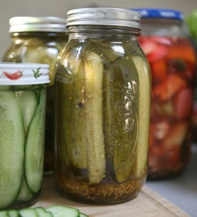 Homemade pickles in mason jars next to other pickled vegetables in mason jar