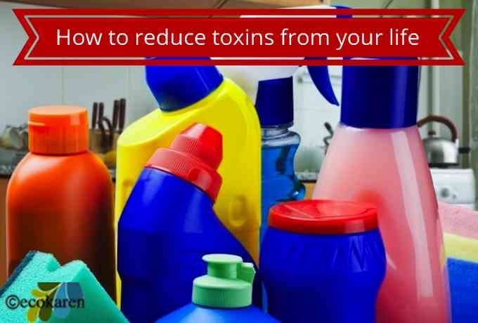 How to reduce exposure to toxic chemicals