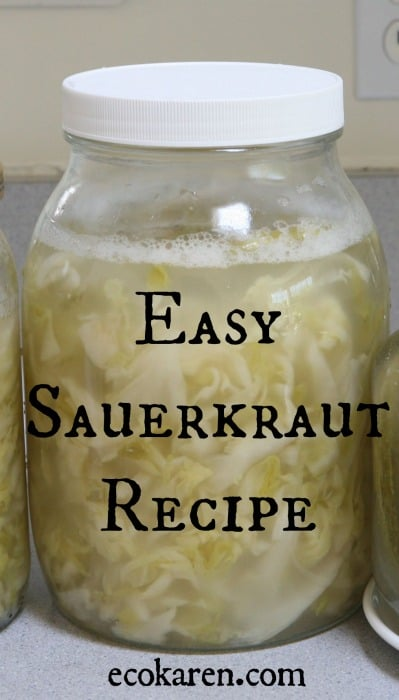 Easy Sauerkraut Recipe ecokaren