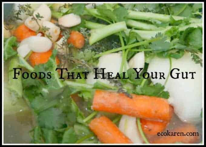 foods that heal your gut ecokaren.jpg