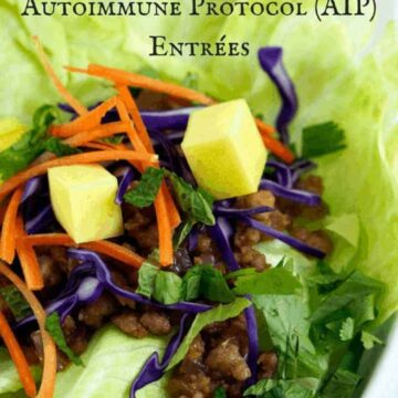 Delicious AIP Entrees
